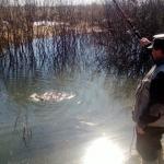 Первая рыбалка на карася 2014