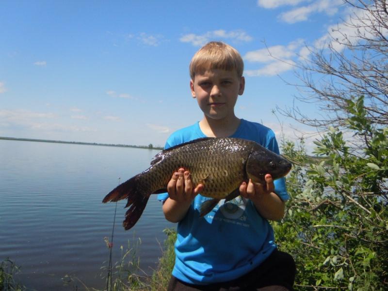 цены на платную рыбалку в самарской области